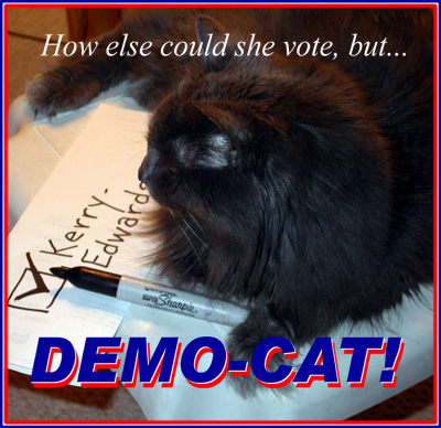 Voting kitty