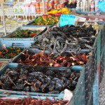 Open air grocery, Tulum. (something is wrong with the thumbnail, but if you click on this one, the photo stil comes up)