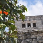 My favorite shot at Tulum.
