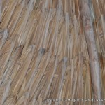 Roof detail of the palapa over our table at the restaurant.