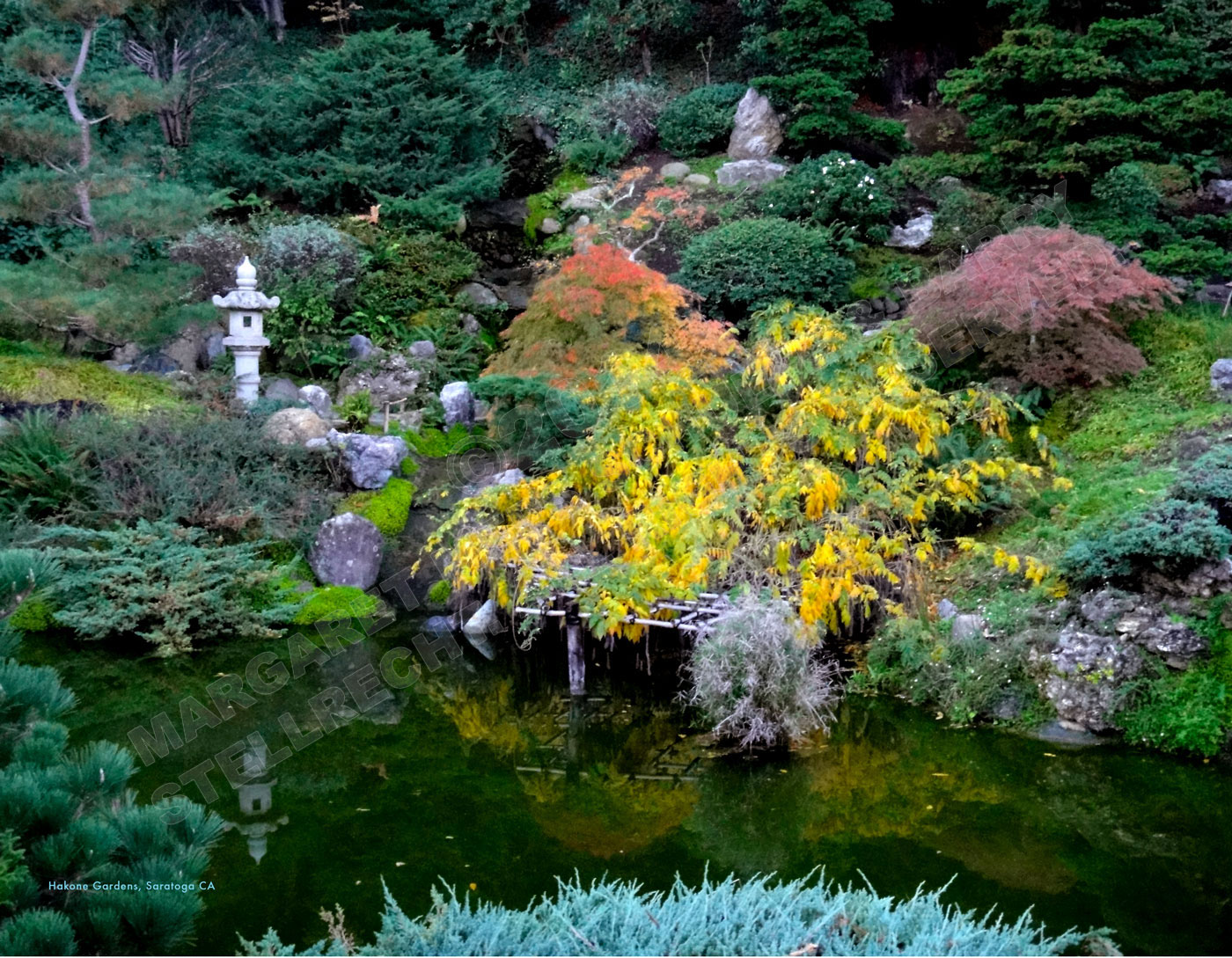 Hakone Gardens, Saratoga, CA
