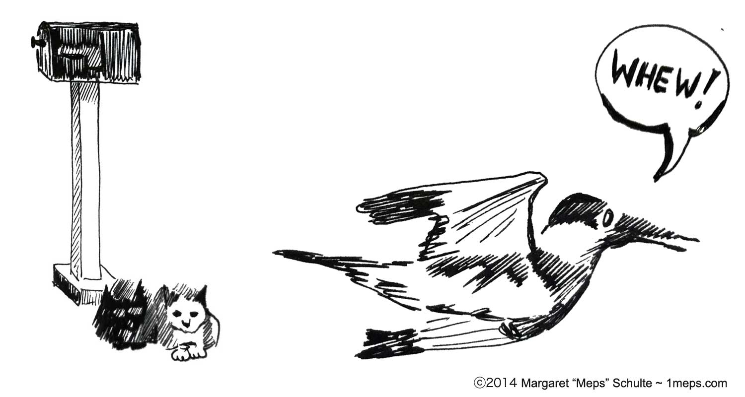 Pen and ink illustration of kittens and kingfisher