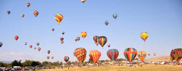 The field of balloons